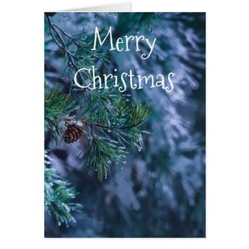 Blank Inside Frozen Pine Christmas Card