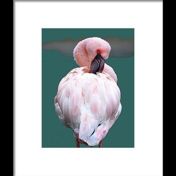 Pink Flamingo Art Print - Framed Print