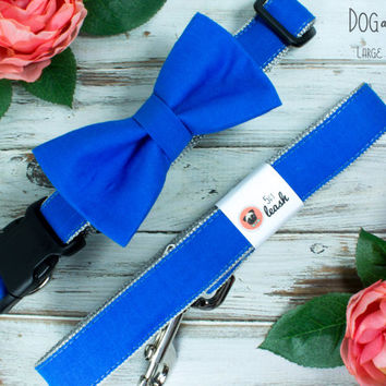 Bright Blue Dog Collar with Removable Bow Tie