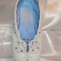Truly stunning decorated pointe shoe