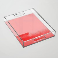 Dynamic Duo Acrylic Tray by duckyb