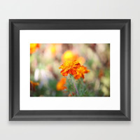 Marigolds In The Fall Framed Art Print by Theresa Campbell D'August Art