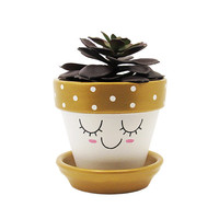 Succulent Planter, Terracotta Pot, Cute Face Planter, Air Plant Holder, Plant Pot, Flower Pot, Indoor Planter, Succulent Pot, Gold Planter