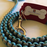 Reversible Baby Blue and Grey Para Cord Dog Leash