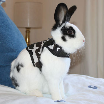 Made to order camouflage rabbit harness and  matching  leash. Unisex.