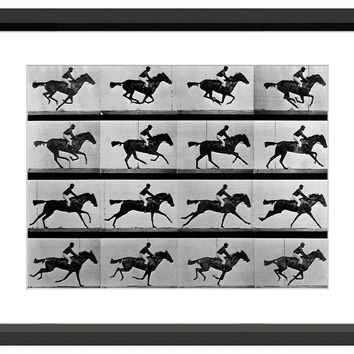 Eadweard Muybridge, In Motion, Photographs