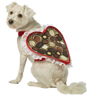 Chocolate Box Dog Costume Sm