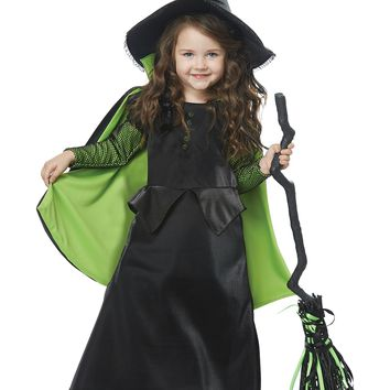 California Costumes Wizard West, Dorothy Wicked Witch Of Oz Toddler Costume, Black/Green, TD (3-4)