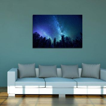 canik48 Canvas Print Stretched Wrapped Milky Way night sky forest 26x40""