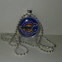 "St. Louis Blues 1"" Pendant Necklace free shipping NHL necklace"