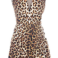 HOT GIRLS MESH LEOPARD DRESS