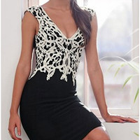 Black Embroidered Lace V-Neck Sleeveless Bodycon Dress