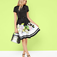 Forget Me Not skater dress - Black | Dresses | Ted Baker
