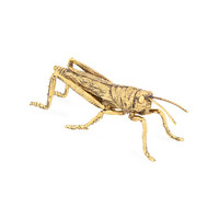 Metal Insect | ZARA HOME United States of America