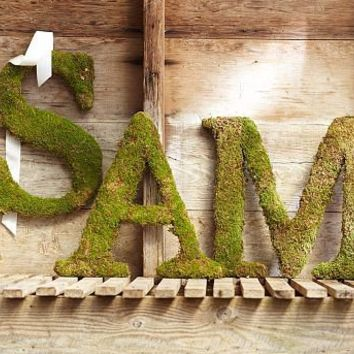 Live Moss Letters | Pottery Barn