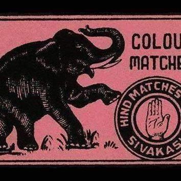 Elephant Colour Matches (Canvas Art)