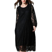 Women's Dress Lace Long Sleeve Autumn Spring Casual Loose Fitting Plus Size