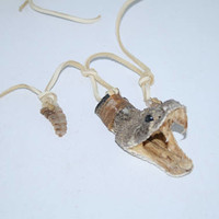Mountain man necklace....  e376.... Rattlesnake head with 2 rattles necklace,.... replica primitive...