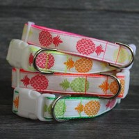 Personalized Pineapple Dog Collar