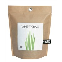 Garden in a Bag - Wheat Grass (491571412), Organic Garden Plants, Herb Garden & Terrariums | bambeco