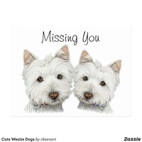 Cute Westie Dogs Postcard