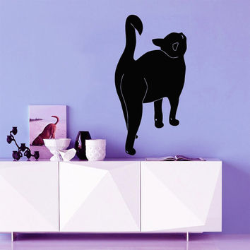 Cat Wall Decal Pet Shop Vinyl Stikers Baby Kitten Decal Art Mural Home Dorm Play Room Design Interior Living Room Animal Decor KY79