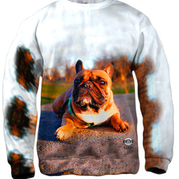 Thundering French Bulldog