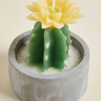 How Does Your Garden Glow? Cactus Candle in Yellow