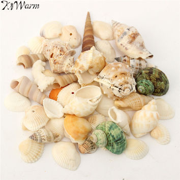 KiWarm Mediterranean Style Beach Mixed SeaShells Mix Sea Natural Shells Shell DIY Crafts Aquarium Decoration Household Pendant