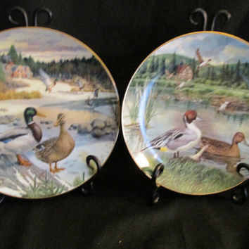 Bart Jerner's Ducks, The Mallard and Pintail, Living with Nature Series Collectors plates, Vintage 1986