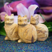 Palo Santo Cats for aromatic healing and feline magic