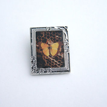 Butterfly Entomology Pendant Specimen Photograph in Small Silver Frame