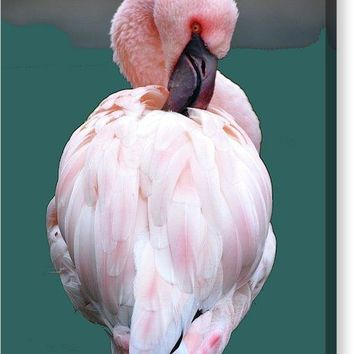 Pink Flamingo Art Print - Canvas Print
