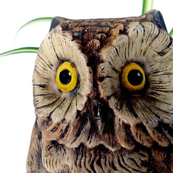 Vintage Ceramic Owl Planter marked JS free shipping Woodland Bird Hoot Owl for indoor gardening home decor