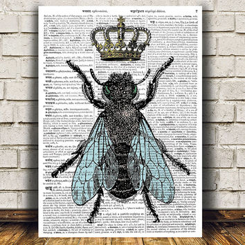 Nature art Fly poster Insect print Dictionary print RTA692