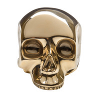 The Evolution Store Brass Skull - Skull Sculpture - ShopBAZAAR