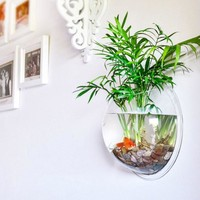 Transparent  Fish Tank Pot  Bowl Plant Wall Mounted Hanging Bubble Bowl Fish Tank Aquarium Home Decoration Accessories Supplies