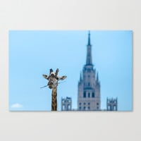 One more bite to outgrow the tallest Canvas Print by Digital2real