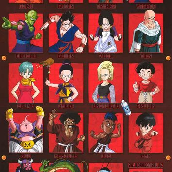 Dragon Ball Z Characters Poster 22x34
