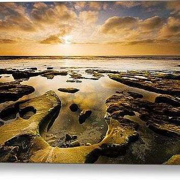 La Jolla Horseshoe Stretched Canvas Print / Canvas Art By Joel Olives