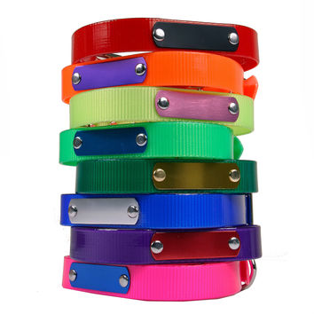 Dog Collars:  Water Proof - Personalized