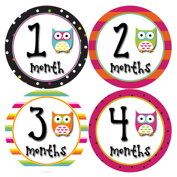 Baby Girl Monthly Baby Stickers Style #342