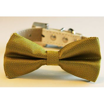 Gold dog Bow tie leather collar, pets Wedding accessory