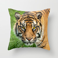 GAZE OF THE TIGER Throw Pillow by catspaws