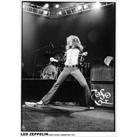 Led Zeppelin - Import Poster