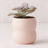 Domenic Frunzi Mini Ceramic Planter | Urban Outfitters