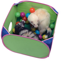 Pop-N-Play Ball Pit for Ferrets