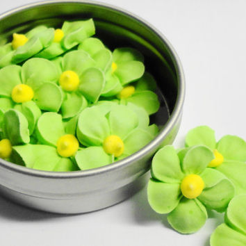 cupcake flowers cake lime green sprinkles birthday cake pastries Blossoms Vegan, Gluten Free All Natural Decorating Supplies