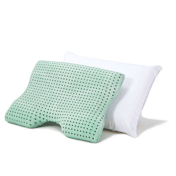 Standard Size Contour Memory Foam Pillow with Removable Fabric Cover