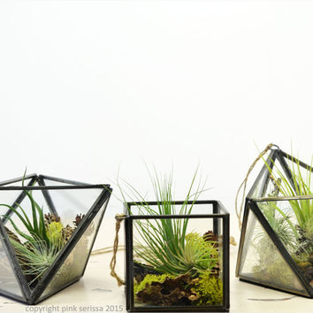 Set of Three Geometric Air Plant Terrariums// Hanging String Garden// Green Gift// Living Home Decor